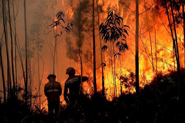 Portugal em situação de alerta por elevado risco de incêndio