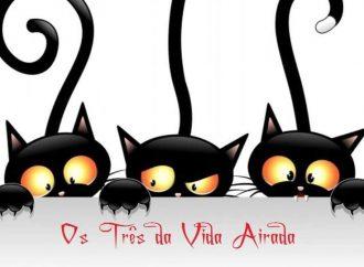 Os Três da Vida Airada #13
